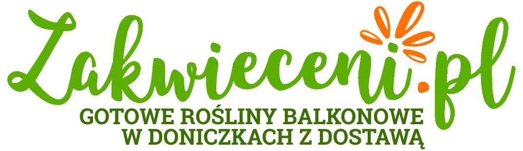 Zakwieceni.pl Blog