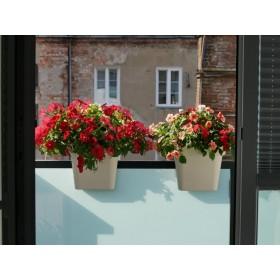 Kompozycja upiększy zarówno  balkon, jak i widok z okna