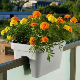 kremowy-pomarańczowy-żółty